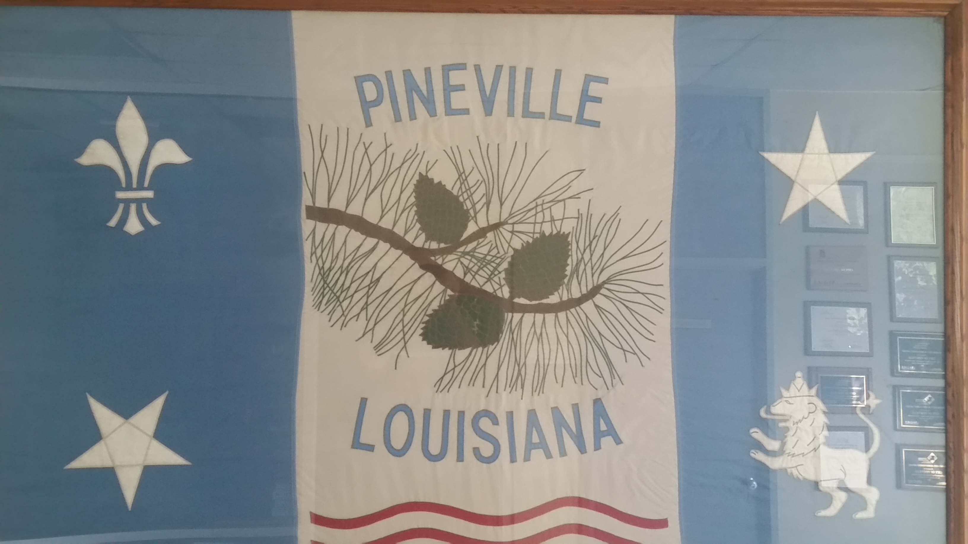 City olf Pineville Flag